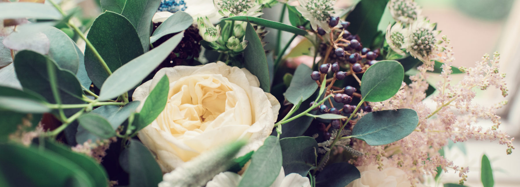 A bouquet of cream flowers and muted green foliage.