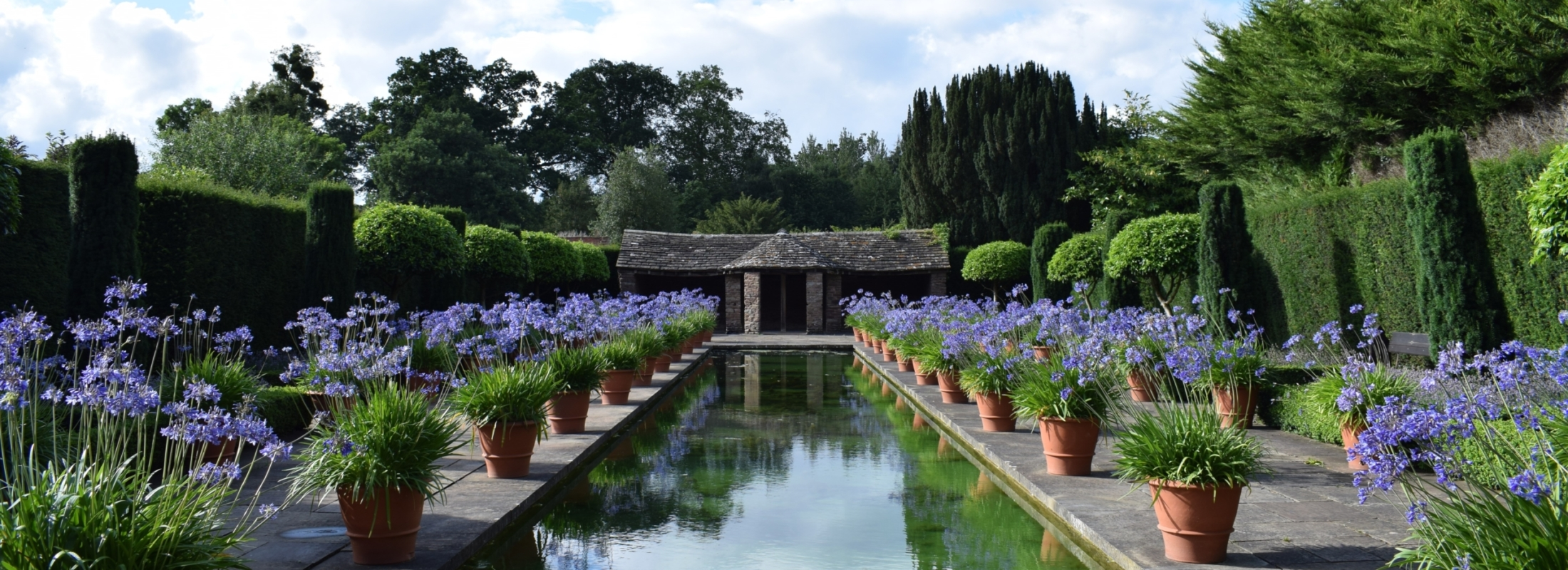 water canal with hut at the end and pots of purple flowers