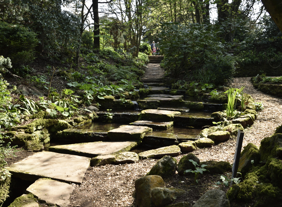 A stone path leading down a slope, water on either side
