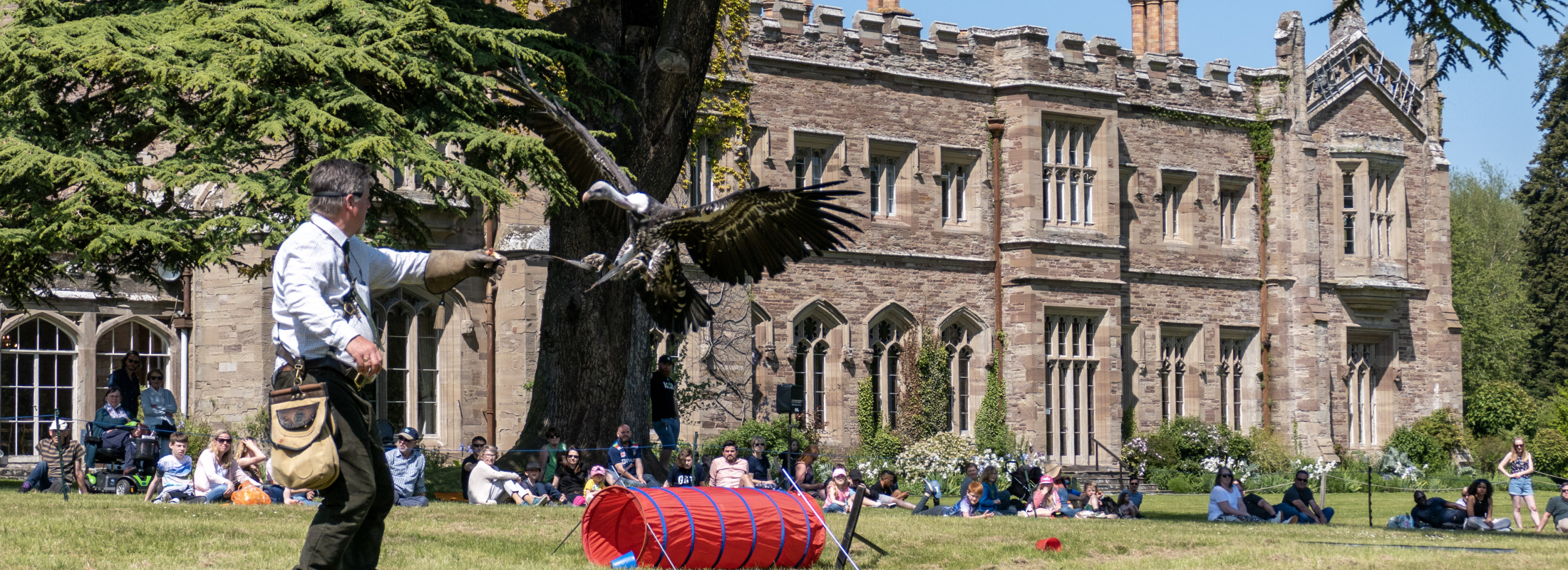 A bird of prey landing on the outstretched arm of a man. Behind them a crowd watches, seated on the grass in front of a castle